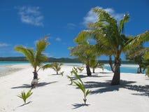 Praia tropical idílico do console. Fotos de Stock Royalty Free