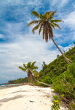 Praia tropical impressionante Fotos de Stock Royalty Free