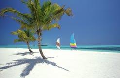Praia tropical, Maldives Imagem de Stock Royalty Free