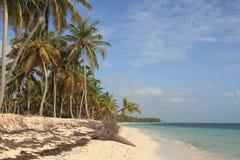 Praia tropical na República Dominicana Imagem de Stock