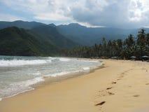 Praia tropical na Venezuela Imagem de Stock