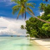 Praia tropical ninguém Vista da praia tropical do paraíso com palmas de coco imagens de stock royalty free