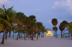Praia tropical no crepúsculo Fotos de Stock Royalty Free