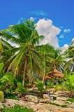 Praia tropical no mar das caraíbas Foto de Stock Royalty Free