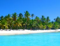 Praia tropical no mar das caraíbas, ilha de Saona, República Dominicana imagem de stock royalty free