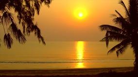 Praia tropical no nascer do sol filme