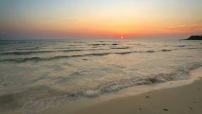 Praia tropical no por do sol bonito video estoque