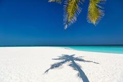 Praia tropical perfeita Imagem de Stock