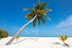 Praia tropical perfeita Fotografia de Stock