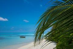 Praia tropical perfeita do paraíso do console Fotografia de Stock