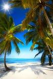 Praia tropical sem tocar do verão da arte foto de stock royalty free