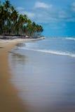 Praia tun Paiva, Pernambuco - Brasilien Stockfoto