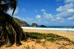 Praia tun Sancho - Fernando de Noronha stockfotos