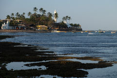 Praia tun Stärke - Bahia, Brasilien Lizenzfreie Stockbilder