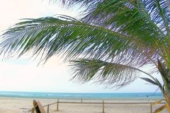Praia vazia da manhã Fotografia de Stock Royalty Free