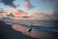 Praia vazia em sunsent Imagens de Stock