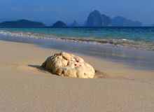 Praia virgem tropical imagens de stock royalty free