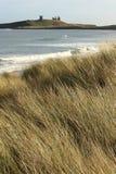 Prairie à la côte du Northumberland près de Dunstanburgh Image libre de droits