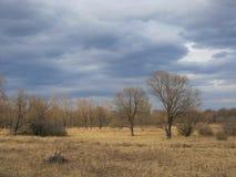 Prairie Stock Afbeeldingen