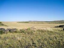 prairie Immagini Stock Libere da Diritti