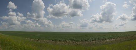 prairie Immagine Stock Libera da Diritti
