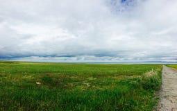 prairie Fotografia Stock Libera da Diritti