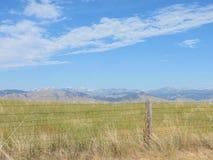 Prairie aan Bergen stock afbeeldingen