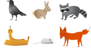 Prairie Animals. Including crow, rabbit, raccoon, rattle snake, field mouse, and fox Royalty Free Stock Photo