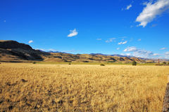 The prairie in autumn day Royalty Free Stock Photography