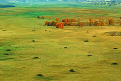 The prairie in autumn Stock Image