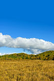 The prairie autumn scenery royalty free stock photos