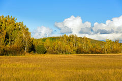 The prairie autumn scenery Stock Images