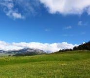 Prairie avec le ciel bleu Image stock