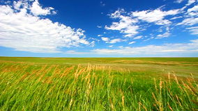 Prairie in Badlands National Park stock footage
