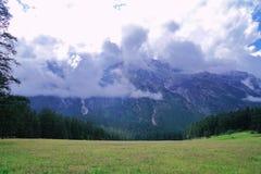 The prairie beneath the snow mountain royalty free stock photo