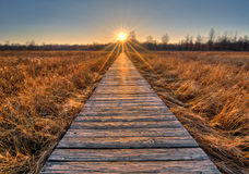 Prairie Boardwalk Sunset Royalty Free Stock Photography