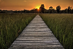 Prairie Boardwalk Sunset Royalty Free Stock Image