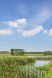 The prairie and bridge Stock Photography