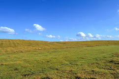 Prairie. Broad mountain meadow as the prairie and a few white clouds on blue sky Stock Photo