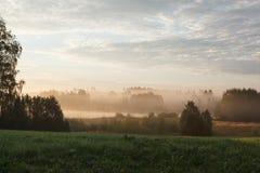 Prairie brumeuse tranquille au lever de soleil Image libre de droits