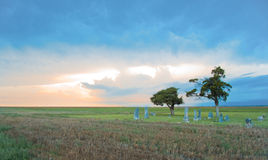 Prairie Cemetery. Setting sun and a thunderstorm over a prairie cemetery Royalty Free Stock Photography