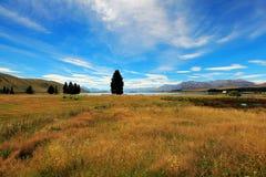 Prairie, ciel bleu, montagne, lac et heure d'été Image libre de droits