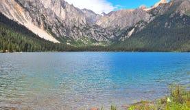 Prairie complètement des fleurs, de la haute montagne et du lac Cuopu Photo libre de droits