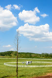 The prairie and Cow statue stock image
