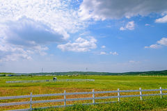 The prairie and Cow statue royalty free stock photo
