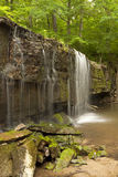 Prairie Creek Falls Royalty Free Stock Images