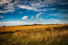 Prairie d'été et saison abandonnée de radar Image stock