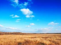 Prairie d'automne Photos stock
