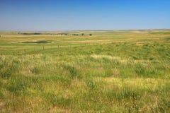 Prairie in Dakota royalty-vrije stock afbeelding