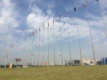 Prairie de drapeaux nationaux images libres de droits